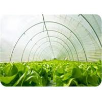 China 200 Micron White Uv Resistant Plastic Rolls Low Density For Protecting Crops on sale