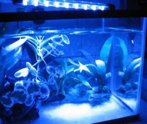 China Waterproof led aquarium Marine light on sale