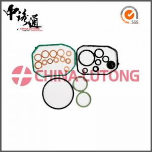 China 5.9 cummins diesel rebuild kit 800636 for SEAT/VW high quality diesel rebuild kit for sale on sale