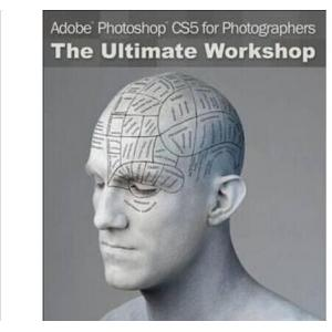 China Windows Adobe Photoshop CS6 Design Standard Software Microsoft Adobe Retail Package on sale