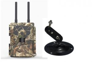 China LTE 4G Hunting Wireless Tree Camera Support FEE / TDD-LTE , WCDMA , GSM Network on sale