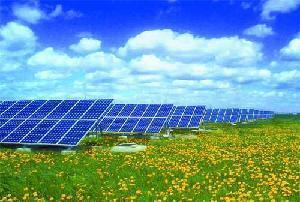 China 80W Monocrystalline Solar Panel (WS-SM80W) on sale