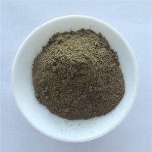 China health care product nutrition supplement fucus vesiculosus extract on sale