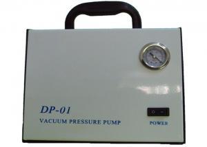 China DP-01 Dry Vacuum Pressure Pumps Oil Free Vacuum Pump For Steroid Oils Filtration DP-02 / DP-03 on sale