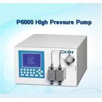 P6000 Preparative High Pressure Pump