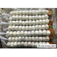 Normal White Fresh Organic Garlic , Raw Garlic -3 ℃ To 0 ℃ Transporting Temperature