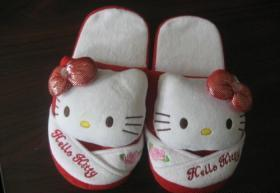 China Plush Indoor Slipper on sale