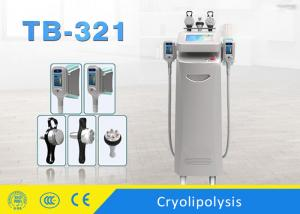China 10.4 Inch Touch Screen Cryolipolysis Slimming Machine For Full Body Non Invasive on sale