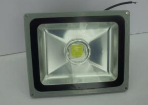 China 80W 50HZ Outdoor LED Flood Lights , Water Proof RF Lighting For Garden on sale