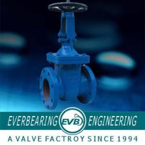 China ANSI B16.1,125, DIN 2532 PN10, 16 Resilient Gate Valve supplier