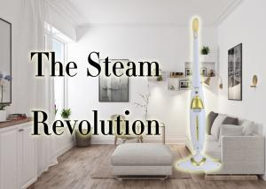 China Industrial 12 In 1 Steam Mop Green 5M Cable 550ml Tank 3kg Weight on sale