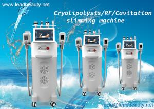 China -15℃ to 5℃ cool cryolipolysis slimming /40K cavitation RF for clinic or salon with 14 inch screen for leg arm abdomen on sale