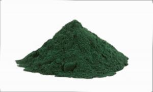 China Green Fine Natural Spirulina Powder Treatment Allergic Rhinitis ISO Approval on sale