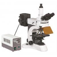 Trinocular Epi - Fluorescent Microscope , Video Microscope BS - 7000A