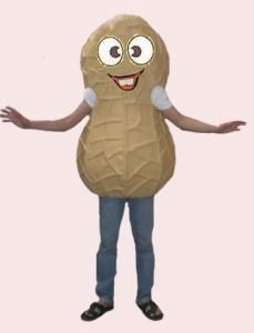 Quality handmade advertising peanut mascot cartoon cosplay costumes for sale