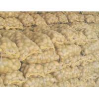 Fresh No Fleck Organic Potatoes / Spud For Vegetable Shop , Market