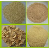 China DEHYDRATED GARLIC FLAKES 2.2MM on sale