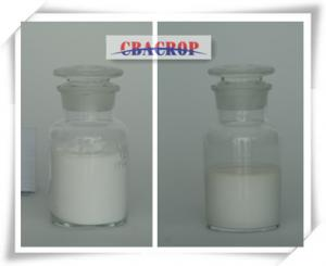 China Difenoconazole 95%TC, 30%SC, 25%EC, 15%WDG, 10%WDG on sale