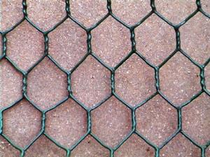 China cheap price anping chicken coop wire mesh/hexagonal wire mesh on sale
