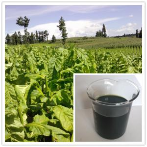 China best plant food for all plants and tree:seaweed extract fertilizer liquid on sale