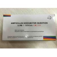 Ampicillin Sodium Powder Injection 1.0g Antibiosis Drugs 3 Years Expiration Date