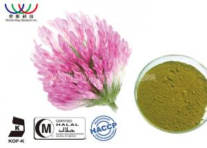 China Organic Red Clover Flower Extract , Natural Phytoestrogens Red Clover Isoflavones Extract on sale
