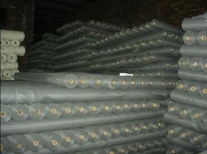 China PVC Coated Fiberglass Mosquito Net Insect Mesh Roll , CE / SGS Window Net Screen on sale