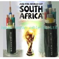 Hot-selling in South Africa pvc Insulated Cable