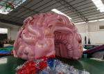 Customized Size Inflatable Event Tent Simulation Brain Model For Medical Show