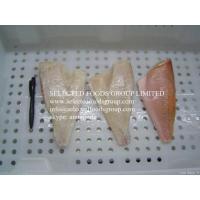Frozen Ref Fish Fillet