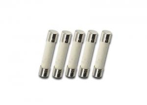 10A Fast Acting Cylindrical Fuse 300VAC