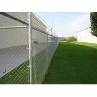 Barbed PVC coated Galvanized Chain link fence ( Diamond wire mesh )