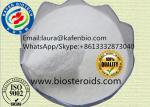 China Pharmaceutical Grade Raw Material Amino Acid Supplements Chitosan For Food CAS:9012-76-4 wholesale