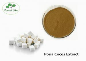 China Pure Narural Mushroom Extract Powder Poria Cocos Extract 3% Triterpene on sale