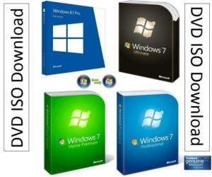 China 32/64 Bit Microsoft Windows 7 Professional / Home Premium / Ultimate OEM License Key Sticker supplier