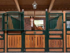 China Steel Q235 Small Horse Portable Stalls With 20mm 28mm 30mm Bamboo on sale