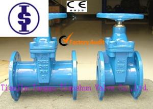 China Mechanical Joint Resilient Wedge Gate Valve , ANSI 4 Inch Water Gate Valve on sale
