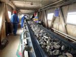 Heat Resistant Flat Rubber Belt Conveyor For Coal Mining 130 - 320 T/H