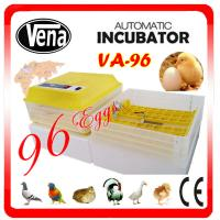 New Condition and Chicken,Reptile,Bird,Emu,Ostrich,Turkey,Goose,Duck,quail .snack Usage 96 mini egg incubator