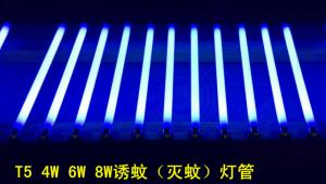 China High Quality 4W 6W 8W UV Tube Mosquito Killer Lamp T5 on sale