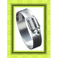 China AISI 304 Stainless Steel Hose Clamps on sale