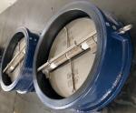EPDM / NBR dual plate valve seat, Vulcanized rubber valve seats