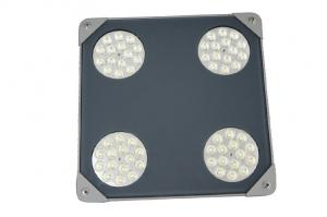China 50 Watt 5500Lumen LED Outdoor Dimmable LED Canopy Lights adjustable bracket on sale