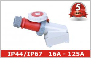 China Waterproof Socket CEE Outlet IP67 Industrial Power Receptacle 3P 4P 5P on sale