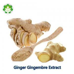 China supplement ginger gingembre extract for health benefits ginger rhizome extract CAS No. 84696-15-1 HPLC on sale