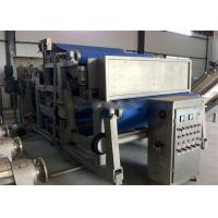 China Orange Apple Fresh Fruit Juice Production Line High Speed on sale