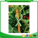 Los lazos suaves ajustables de la planta de jardín de la espuma, jardín plástico robusto atan la talla m L: 9,9 color 36.5*15.5*19 verde