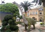 Real Estate Dinosaur Display Artificial Life Size Animatronic Dinosaur Decoration