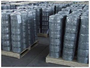 China Hot-dipped Low Carbon Steel Wire ,Wire Mesh Stainless Steel Welded Wire Mesh 1 supplier