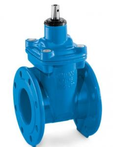 China Ductile Iron Cast Gate Valve / Manual Resilient Seated Gate Valve on sale
